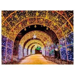 本溪现代彩灯_想买划算的现代彩灯就来新民万胜彩灯厂