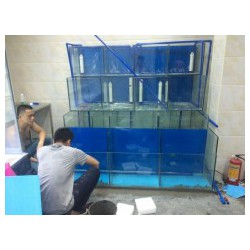 广州农家山庄制冷海鲜池 广州提供最保鲜器备 广州制冷鱼池