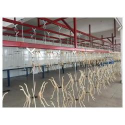 浙江悬挂烘干流水线定制-强牛机械设备_质量好的涂装流水线提供商