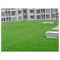 济宁绿化草坪_供应山东高质量的绿化草坪